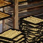 Systemy produkcji potraw – cook-serve